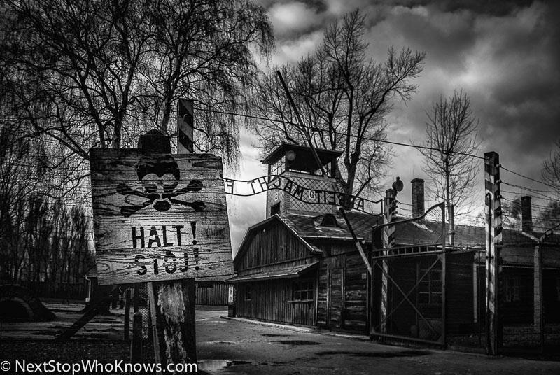 auschwitz labour camp