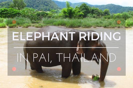 pai elephant camp