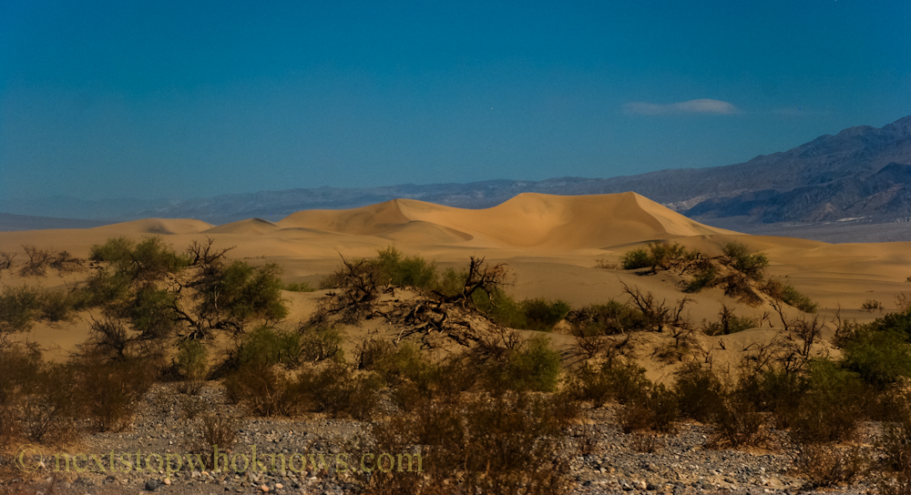 Death valley sand dunes (PHOTO)