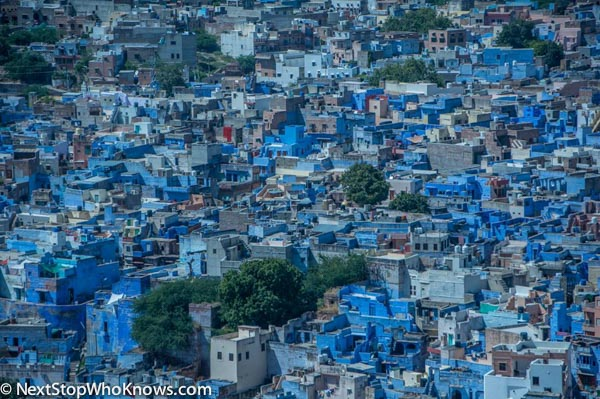 "The ""Blue City"", Jodhpur, India"