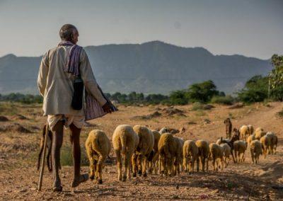 Rajasthan Region, India